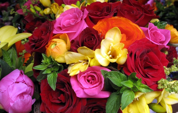 Picture flower, flowers, roses, bouquet, red, pink, orange