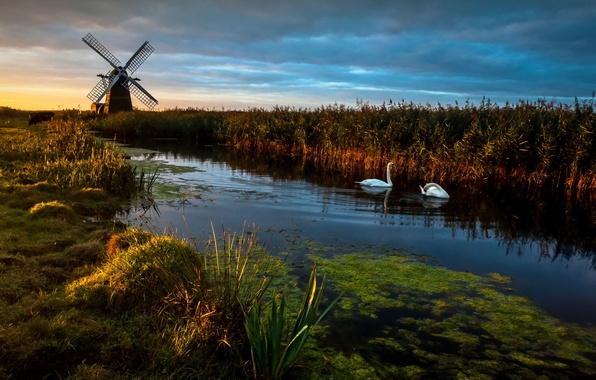 Picture Landscape, Reflections, swans, Herringfleet Dawn, Wind pump, Windmill