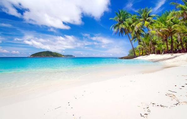 Picture sand, sea, beach, the sky, Islands, clouds, tropics, palm trees, coast, horizon, Thailand, Phuket