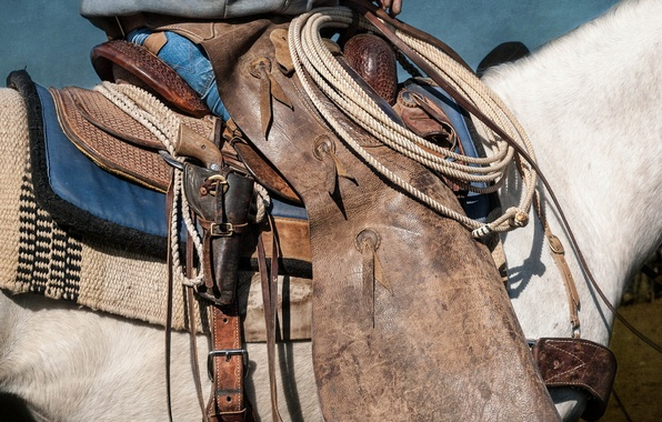 Picture weapons, horse, saddle
