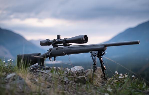 Picture optics, rifle, sniper, fry, Remington 700