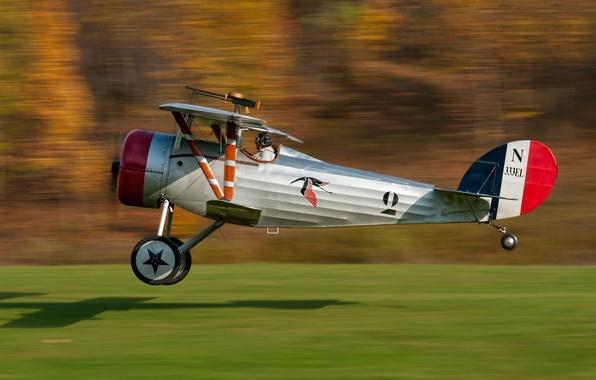 Picture speed, pilot, the plane, single, Nieuport, Nieuport