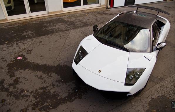 Picture Lamborghini, supercar, Murcielago, LP640