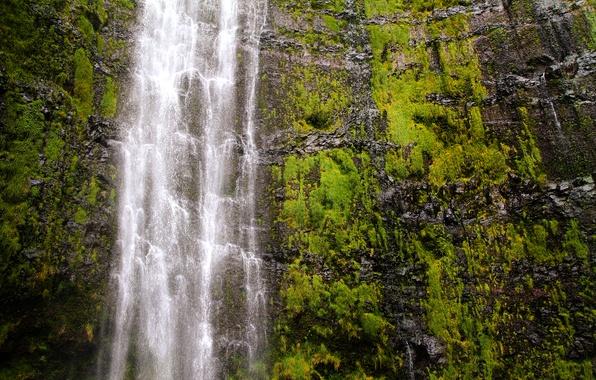 Picture waterfall, Hawaii, USA, USA, Hawaii, Haleakala national Park, Maui, Haleakalā National Park, The Island Of …