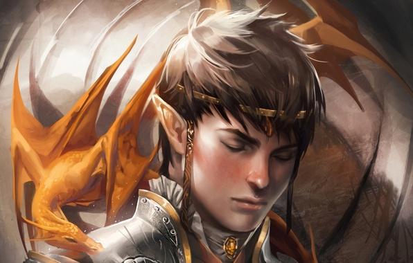 Picture dragon, elf, fantasy, art, fantasy, art, dragon, elf, Faithful, Sakimichan