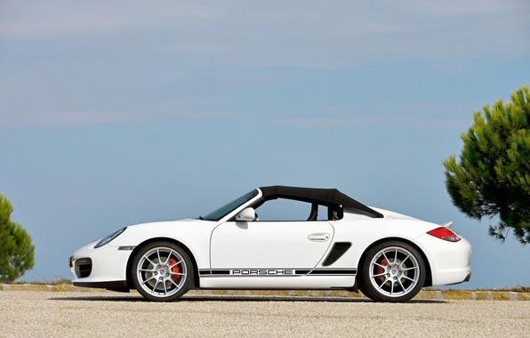 Picture Porsche, 2010, Boxster, Spyder