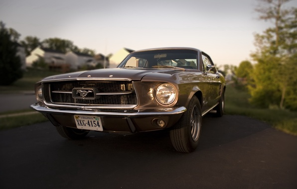 Photo wallpaper Ford, Mustang, 1967