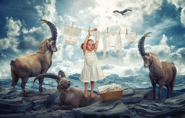 Picture mountains, girl, eagle, in the sky, Horny, Laundry day, soars, mountain goats