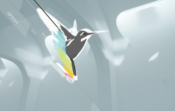 Picture minimalism, vector, Bird, Hummingbird