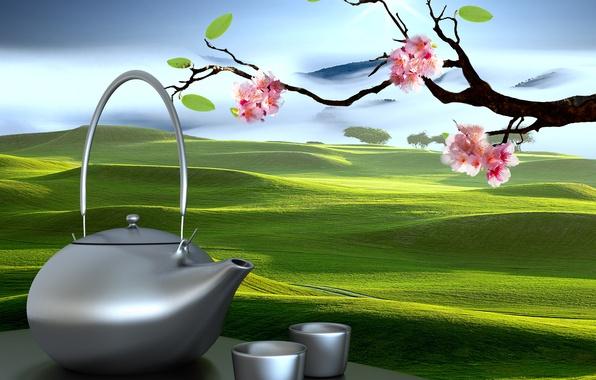 Picture Sakura, kettle, Cup, Eastern landscapes