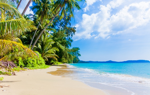 Picture sand, sea, wave, beach, shore, summer, beach, sea, blue, sand, shore, paradise