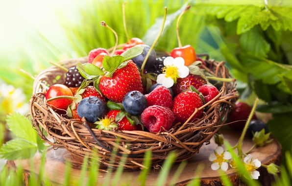 Picture leaves, flowers, berries, raspberry, basket, blueberries, strawberry, cherry, BlackBerry