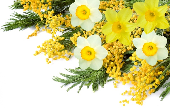 Picture bouquet, spring, Narcissus, Mimosa