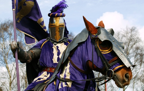 Picture armor, horse, warrior, knight, coat of arms, the, club, military, purple, banner, horse, knight, historical, …