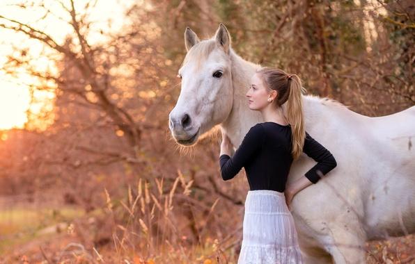 Photo wallpaper horse, girl, nature