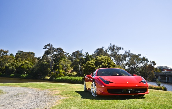 Picture the sky, trees, red, lawn, shadow, red, ferrari, Ferrari, front view, Italy, 458 italia