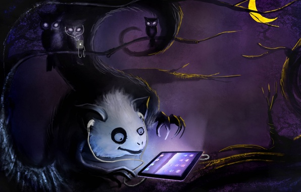 Picture branches, the moon, ipod, Forest, owls, ipad