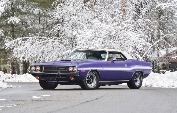 Picture snow, background, Dodge, Dodge, Challenger, 1970, Muscle car, Convertible, Muscle car, R T, 440, Chelenzher, …
