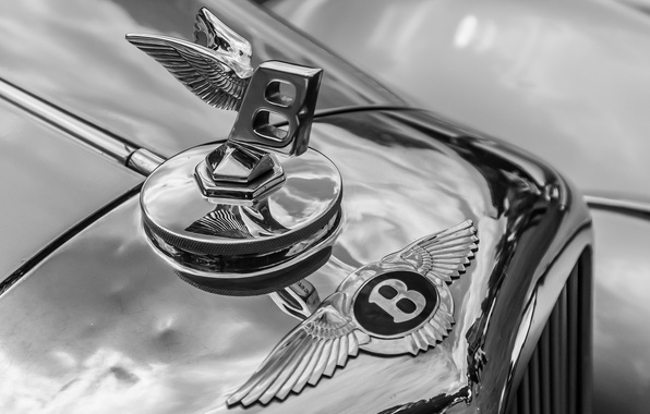 Picture macro, retro, Bentley, grille, emblem