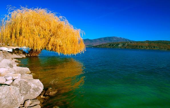 Picture autumn, landscape, lake, tree, Nature, IVA