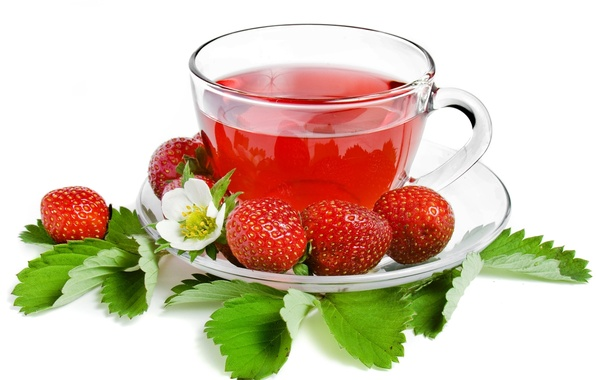 Picture tea, strawberry, berry, Cup, white background, leaves, saucer, strawberry, tea