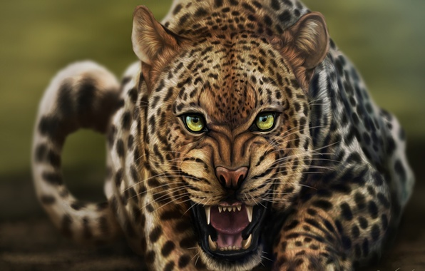 Picture cat, look, face, art, leopard, growl