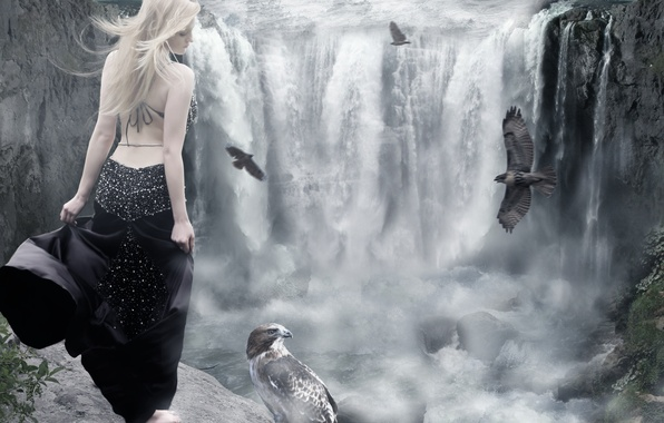 Picture water, girl, birds, back, waterfall, dress, blonde, profile