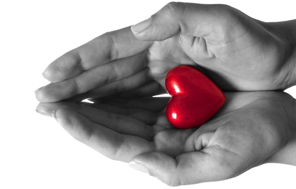 Picture love, heart, hands, feeling