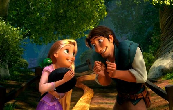 Picture hair, Rapunzel, Rapunzel: a tangled tale, Flynn Rider