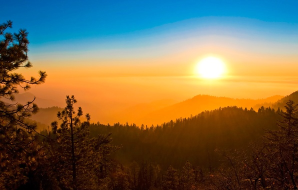 Picture forest, the sky, the sun, sunset, mountains, haze