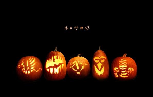 Picture pumpkin, black background, orange, muzzle