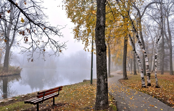 Picture autumn, trees, fog, pond, Park, bench