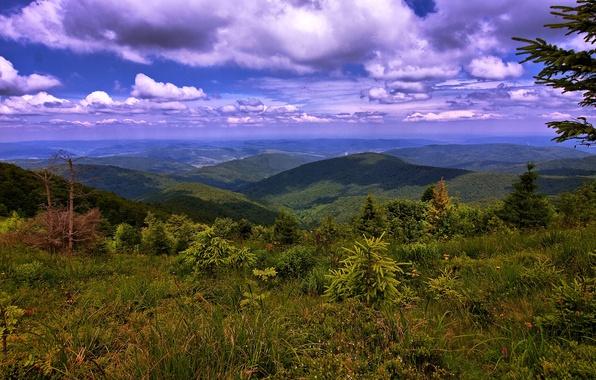 Picture clouds, mountains, landscape, panorama, Ukraine, forest, Carpathians