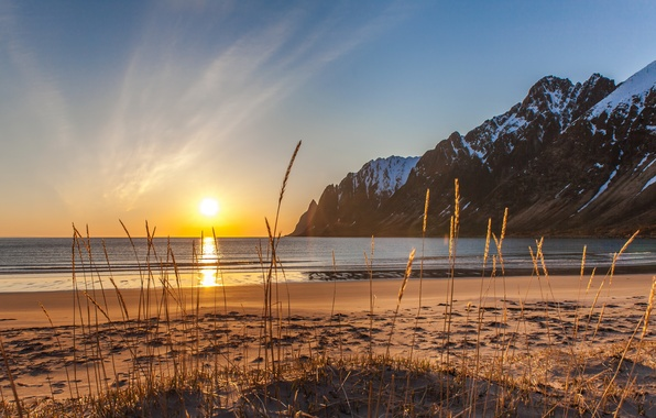 Picture winter, sand, sea, beach, grass, snow, mountains, Norway, Senja, Ersfjordbotn