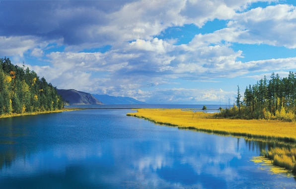 Picture sea, autumn, forest, the sky, grass, clouds, trees, mountains, nature, lake, river
