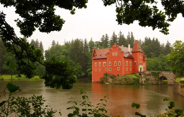 Picture forest, trees, pond, Castle