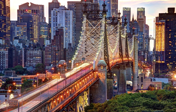 Picture road, trees, the city, lights, building, home, New York, skyscrapers, the evening, lighting, lights, USA, …