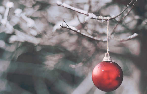 Picture winter, snow, toy, branch, ball