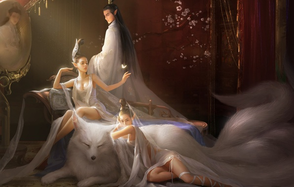 Picture girls, room, animal, butterfly, mirror, art, tail, male, fantasy, Fox