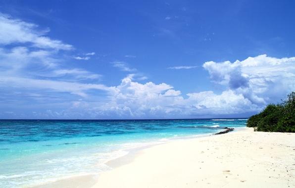 Picture sea, clouds, shore, horizon