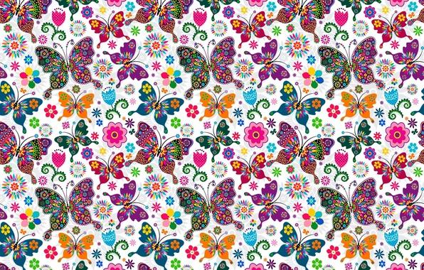 Picture butterfly, pattern, wings