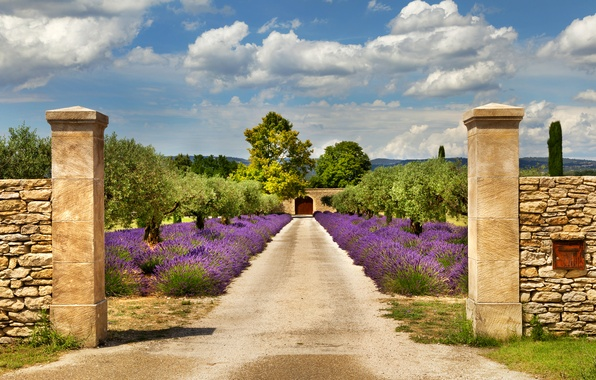 Picture road, the sky, clouds, trees, the fence, France, gate, garden, lavender, Provence