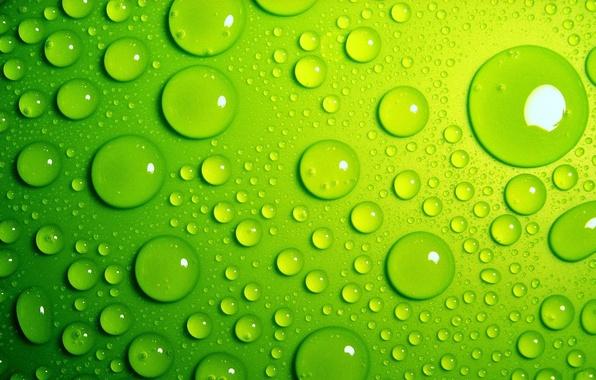 Picture drops, green, bright
