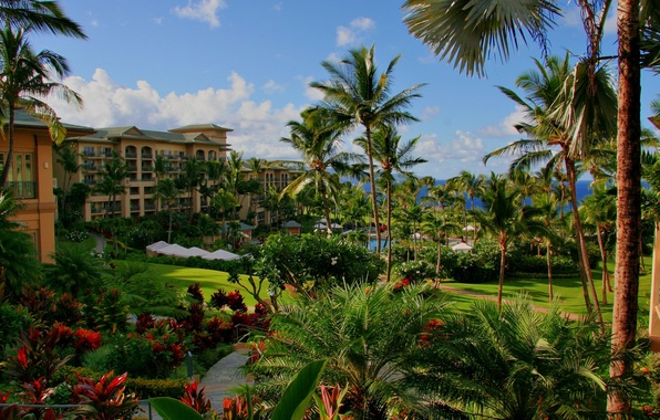 Picture sea, flowers, palm trees, pool, the hotel, Hawaii