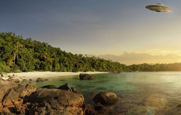 Photo wallpaper sea, stones, palm trees, UFO