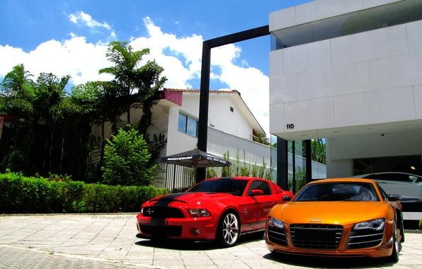 Picture trees, reflection, home, orange, white, audi r8, lamborghini, red, aventador lp700-4, Shelby гт500, Lamborghini aventador, …