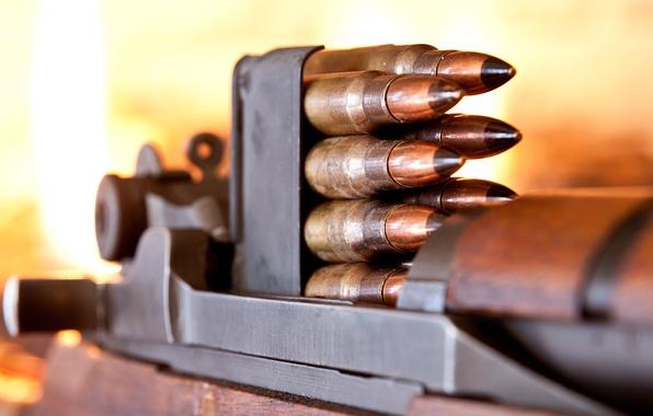 Picture macro, cartridges, carabiner, M1 Carbine
