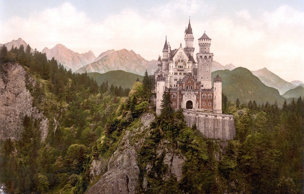 Picture forest, mountains, castle