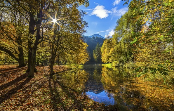 Picture autumn, forest, the sky, water, the sun, clouds, light, mountains, river, foliage, Nature, Tree, Water, …