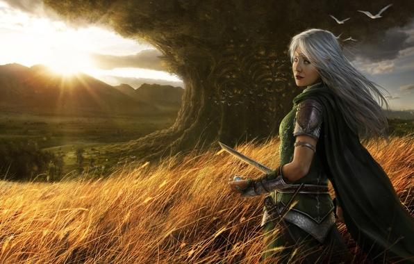 Picture tree, The sun, sword, fantasy